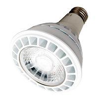 Лампа светодиодная для трековых светильников PAR30 45W E27