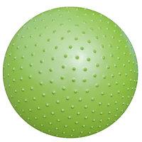 Фитбол ATEMI AGB-02-55, 55 см