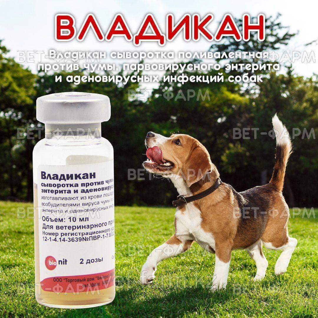 Владикан сыворотка поливалентная против чумы, парвовирусного энтерита и аденовирусных инфекций собак 2 дозы