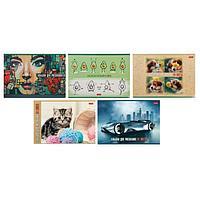 Альбом для рисования А4, 24 листа «Ассорти», обложка мелованный картон, блок 100 г/м2, МИКС