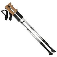 Телескопические палки для скандинавской ходьбы Пара. Оптом