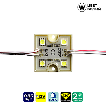 Светодиодные модули FT3535W4SMD5050 (IP67) 0,96W, цвет - белый