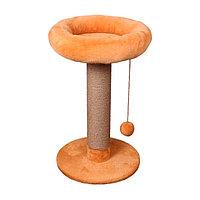 Когтеточка - лежанка высокая с мягким бортом 7 Котиков
