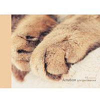Альбом для рисования 40л А4 на склейке -Мягкие лапки- Эксмо 2009