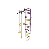 ДСК 'Формула здоровья' 'Лира-1К Плюс' фиолетовый-радуга