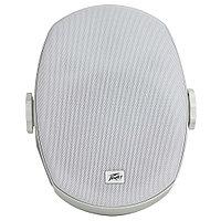 Влагоустойчивая акустическая система Peavey Impulse 5c White