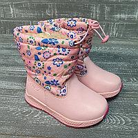 Аляски розовые (малыши, в синий цветочек)