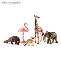Набор фигурок «Животные дикой природы»