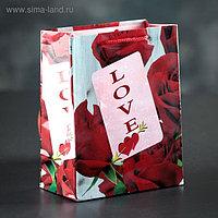 Пакет ламинированный «Любовь», 12 х 15 х 5 см