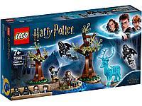 LEGO 75945 Harry Potter Экспекто Патронум, фото 1