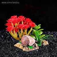 Островок с ракушками и растениями искусственными для аквариума, 12 х 9 х 9 см