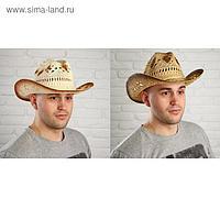 Карнавальная шляпа «Ковбойская», виды МИКС