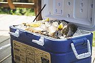Изотермический контейнер (холодильник) 40 литров, фото 2