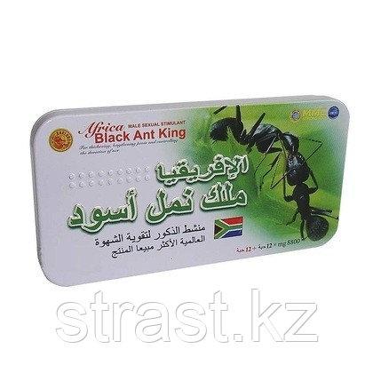 Препарат для потенции Черный королевский муравей