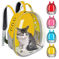 Переноска для домашних животных,прозрачный рюкзак в виде капсулы для кошек, щенков,для собак мини пород