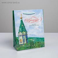 Пакет вертикальный ламинированный «Красноярск» MS, 18 х 23 х 8 см