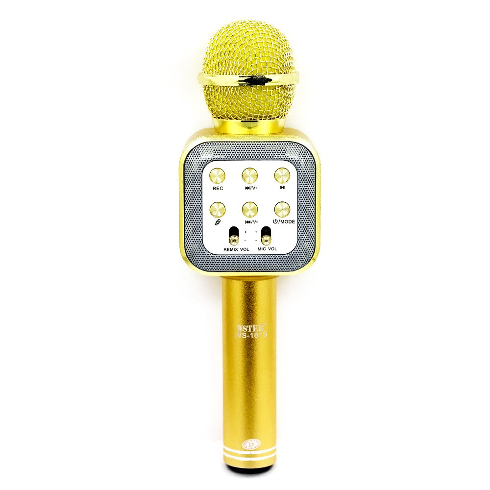 Микрофон-Колонка WS-1818, Gold