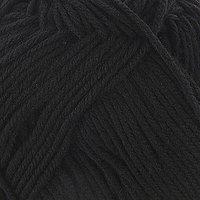 Пряжа 'Элегантная' 100 мериносовая шерсть 250м/100гр (02-Черный)