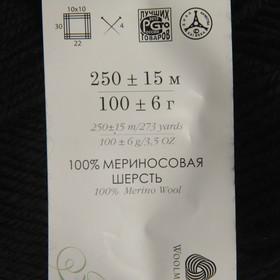 Пряжа 'Элегантная' 100 мериносовая шерсть 250м/100гр (02-Черный) - фото 3