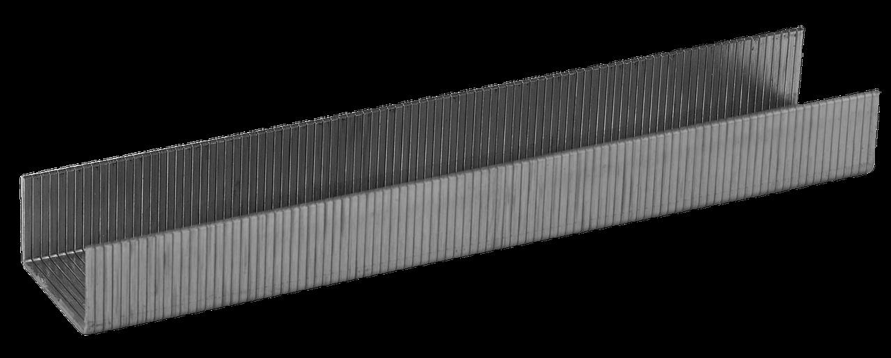 ЗУБР 8 мм скобы специальные  тип 24, 1000 шт