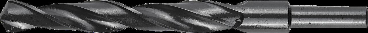 ЗУБР ТЕХНИК 13.5х160мм, Сверло по металлу, проточенный хвотосвик, сталь Р4М2, класс В
