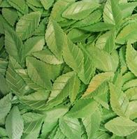 Вафельные листья для Роз, 38мм, зеленный, 1000 шт