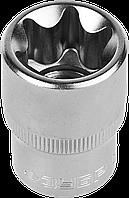 """Головка торцовая ЗУБР """"Мастер"""" (1/2""""), Cr-V, E-TORX, хроматированное покрытие, E10 E22"""