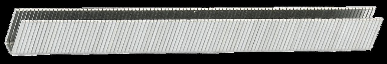 ЗУБР 12  мм скобы для степлера узкие тип 55, 3000 шт