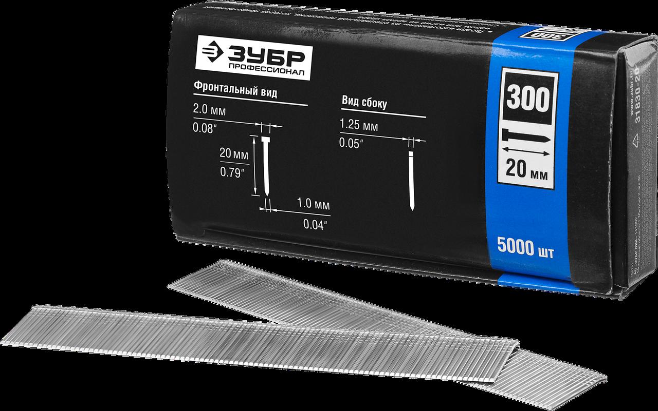 ЗУБР 20 мм гвозди для нейлера тип 300, 5000 шт