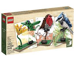 21301 Lego Ideas Птицы