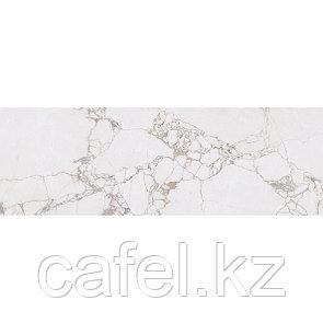 Кафель   Плитка настенная 20х60 Ринальди   Rinaldi серый с разводом