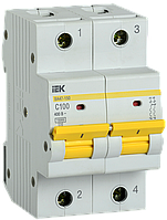 Автоматический выключатель ВА47-150 2Р 100А 15кА х-ка C IEK