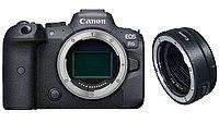 Цифровой фотоаппарат Canon EOS R6 Body + Canon Mount Adapter EF-EOS R (гарантия 2 года + страховка)