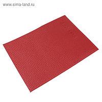 Обложка для паспорта, отдел для кредитных карт, цвет красный