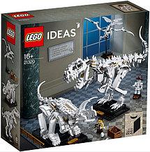 21320 Lego Ideas Кости динозавра