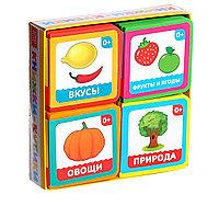 Набор мягких книжек-кубиков EVA «Окружающий мир»