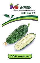 Агрофирма «Партнер». Семена огурцов «ШОША F1».
