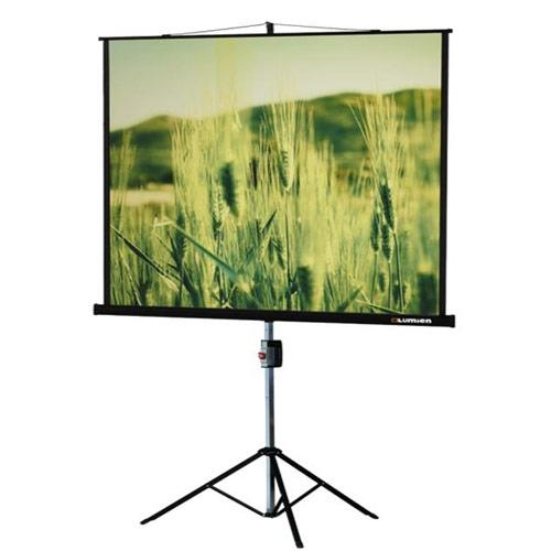 Экран Lumien Master View 220x220 см Matte White FiberGlass LMV 100111