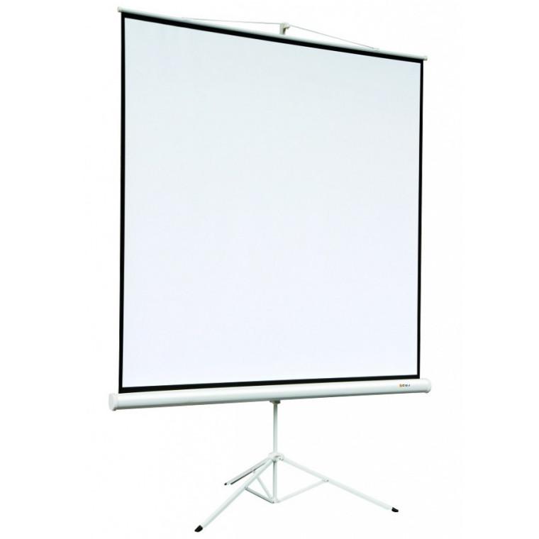 Экран Digis DSKD-4303 (Kontur-D, формат 4:3, 100, 206x159, рабочая поверхность 200x150, MW)
