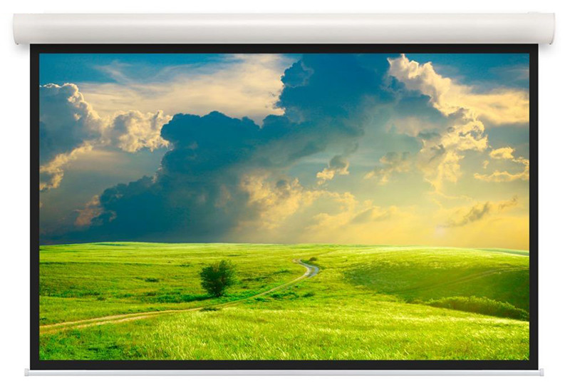 Экран Projecta Elpro Concept 258x340 см (163) Matte White (с черн.каймой) с эл/приводом 4:3 (10103498)
