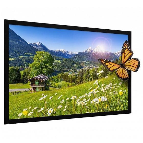 Экран Projecta HomeScreen Deluxe 213x366см (158) HD Progressive 1.1 Perforated 16:9 (10600646/10690518)