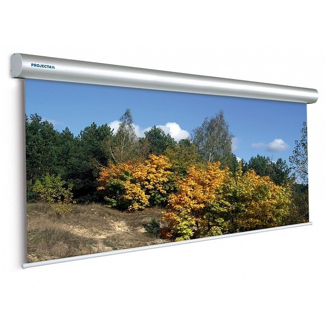 Экран Projecta Master Electrol 300х500см (230) Matte White с эл/приводом (10130236)