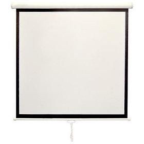 Рулонные ручные экраны Classic Solution