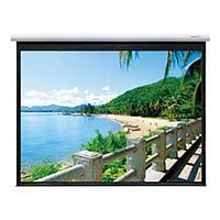 Экран Classic Solution Premier Phoenix-R (16:9) 276х276 (E 266x149/9 MW-PR/W), фото 1