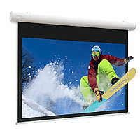 Экран Projecta [10102106] Elpro Concept 173x300 см (131) High Contrast