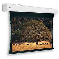 Экран Projecta [10103694] Tensioned Elpro Large Electrol 255x400 см (181) HD Progressive 0.6, фото 1