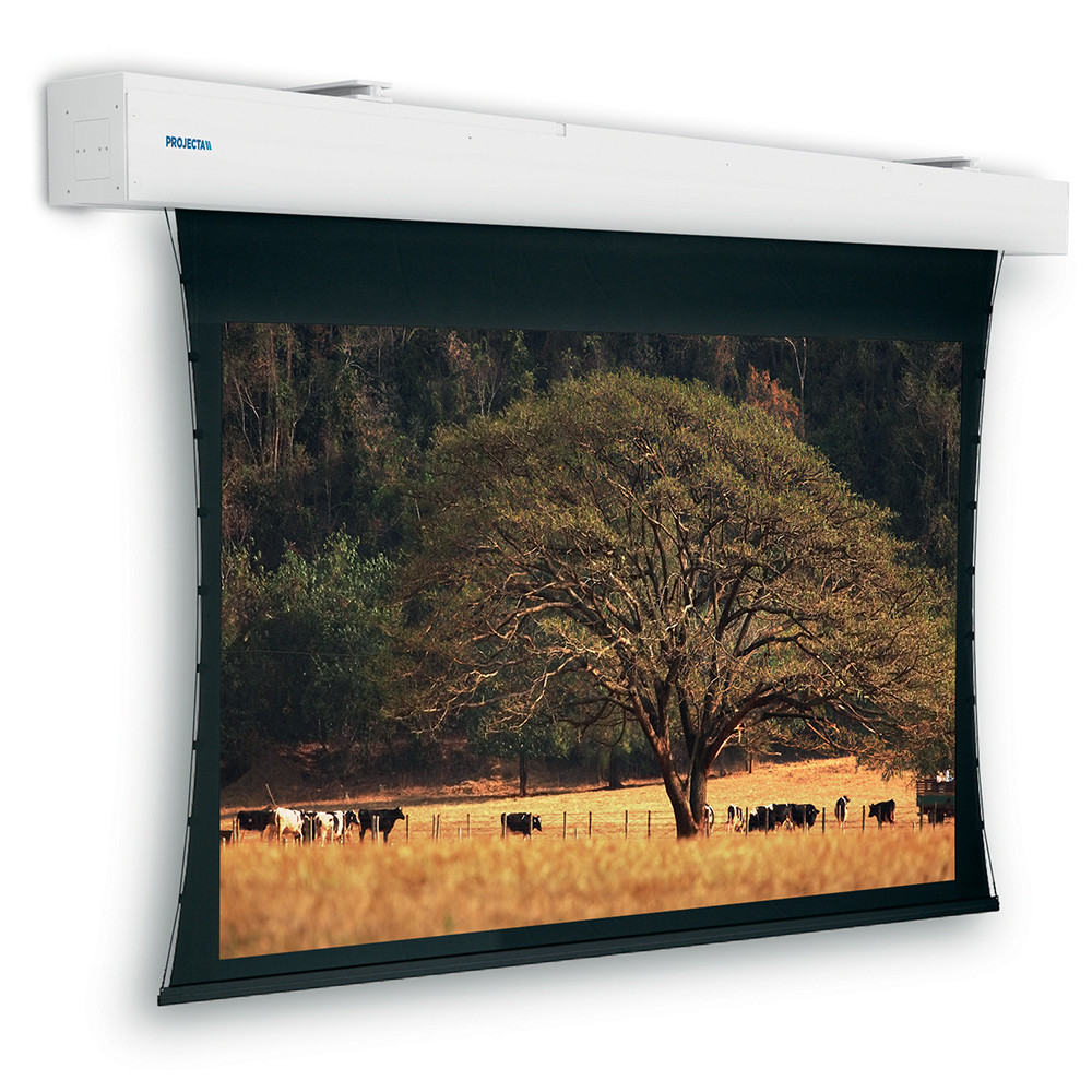 Экран Projecta [10103975] Tensioned Elpro Large Electrol 229x400 см (176) HD Progressive 1.1