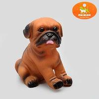Игрушка пищащая 'Маленький друг' для собак, бульдог, 9 см, микс цветов