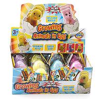 Игрушка яйцо с кроликом, растущим в воде, в ассортименте
