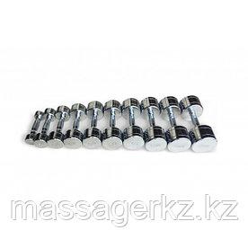 Набор хромированных гантелей (пара)  от 1 до 10кг, с шагом 1кг
